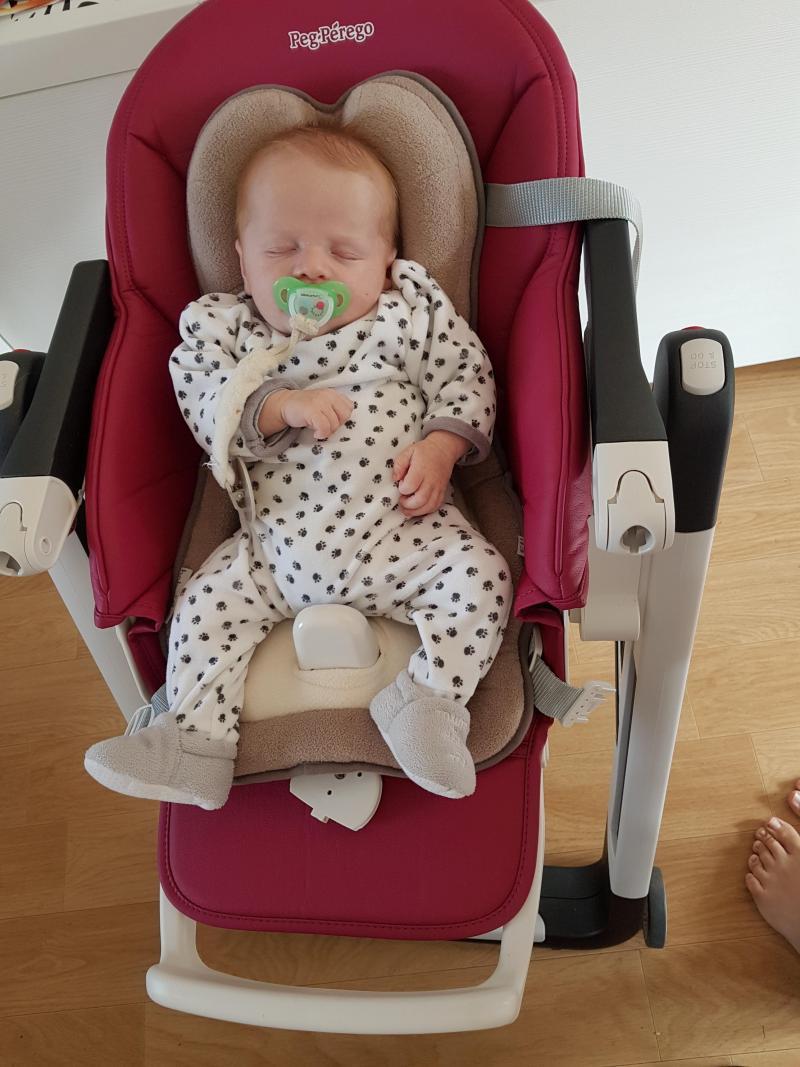 chaise haute siesta peg perego avis. Black Bedroom Furniture Sets. Home Design Ideas