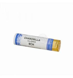 comment prendre chamomilla