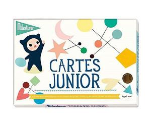 Cartes photos souvenirs Junior - Milestone