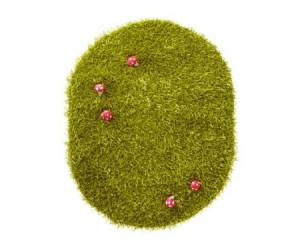 tapis herbe chambre fille theme coccifleurs vertbaudet avis. Black Bedroom Furniture Sets. Home Design Ideas