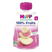 Gourdes 100% fruits