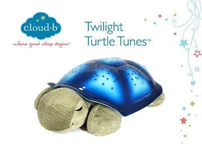 test turtle cloud b